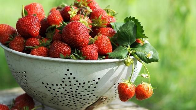 イチゴの画像。